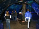 Allianz Arena und SeaLife_6